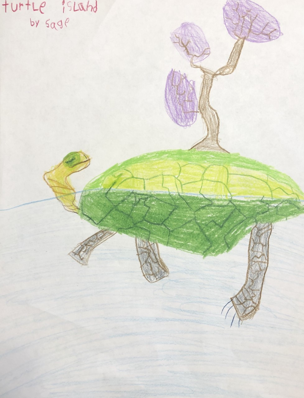 Turtle island by Sage. A hand sketched illustration of a swimming green turtle with a tree on its back. The tree has purple leaves.